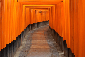 """19.07 - Van West naar Oost: een filosofische reis voor """"doendenkers"""" (vol)"""